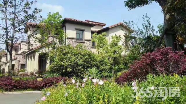 89130平带院子花园洋房湖边欧式别墅送300平院子送露台