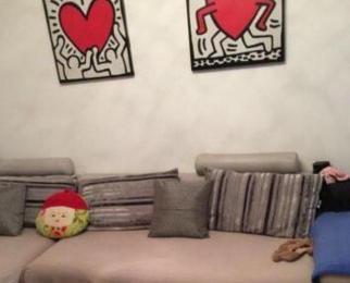 东渡国际青年城 地铁口 精装2室 靠景枫金鹰 拎包入住看房