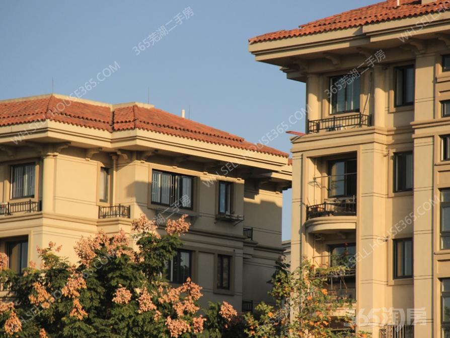 圣 帝雅歌+欧式精装大三房+全新家具+随时看房+拎包入住