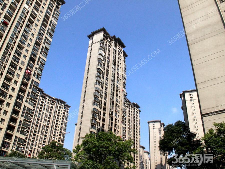 碧桂园3室1厅1卫89.88平米2010年产权房精装