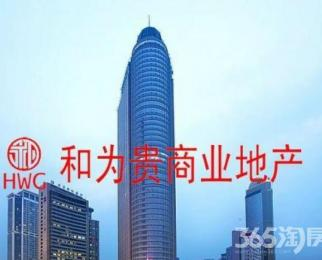 急租国际金融中心 5 A写字楼 多套可选 精装 零 佣