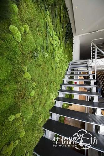 【元洲●品界大宅】植物也可以这样上墙!