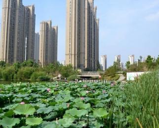 长江长现代城15平米整租