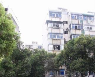 仓顶3室1厅1卫63.39平米精装产权房1989年建
