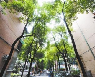 省工业设备安装公司宿舍(东陈岗)2室1厅1卫60.00�O
