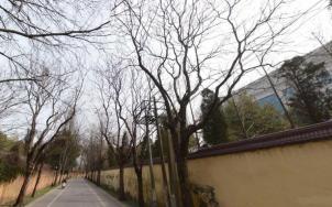农场巷,南京农场巷二手房租房