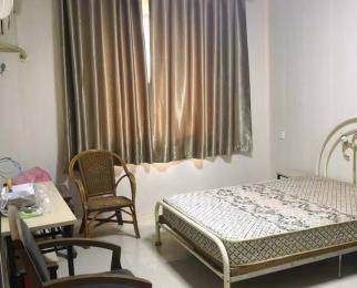全新装修单室套 一楼拎包入住 实拍图片 看房方便
