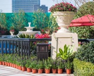 融创江南御园 品牌开发商 小区环境美丽 实验学区 花园洋房