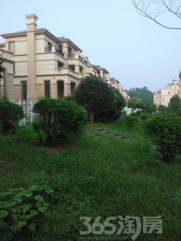 绿野枫景花园5室2厅3卫226平米毛坯产权房2012年建