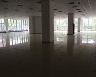 小龙湾地铁口 一楼纯商业 适合任何行业 百家湖商圈 交通