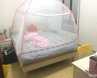 仙林南邮旁 精装三房 设施齐全 干净清爽 拎包入住 适合居
