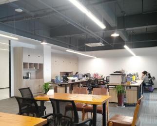 雨花客厅 软件大道 天溯科技园172平方 含家具