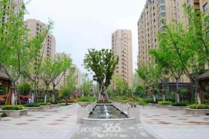 东城豪庭89平米1600元