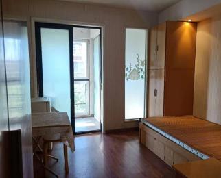 仙林大学城 康桥圣菲 学则路地铁站旁 精装单室套 设施齐