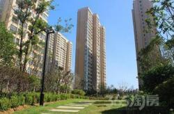 绿地世纪城 电梯2楼 两房边户 价格低 房型南北通透