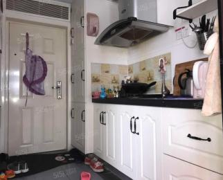 集庆门大街 润花园 挑高公寓 民用水电 随时看房 诚租