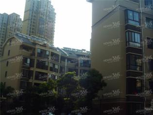 美诚地产经开区 禹州华侨城核心地段 商场众多 采光好 急售
