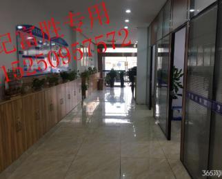 翠屏山 将军大道 南航对面 翠屏国际商铺出租 可做重餐饮