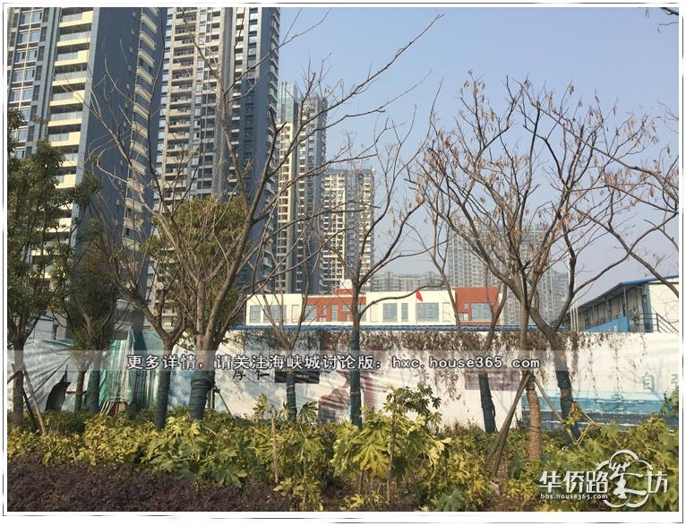 从围墙外可以看到幼儿园的外立面也有了颜色