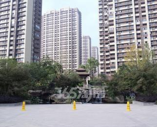 仙林东 天正理想城 精装修 近地铁 交通便利 靠近万达茂