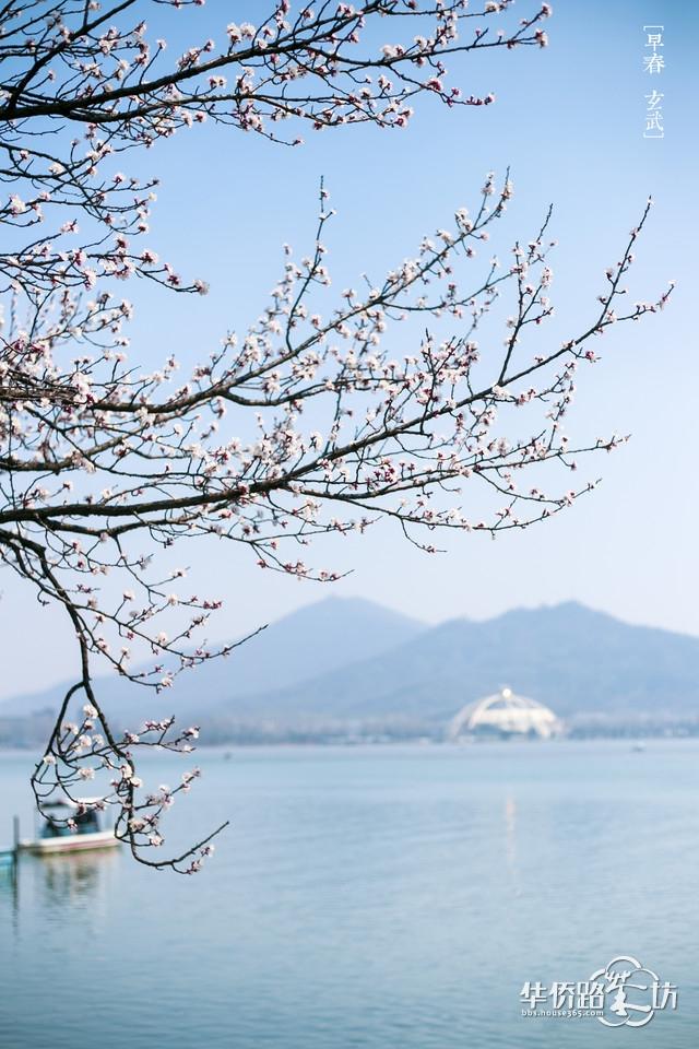 """3月18日""""寻找第一抹春色""""摄影主题踏青活动报名"""