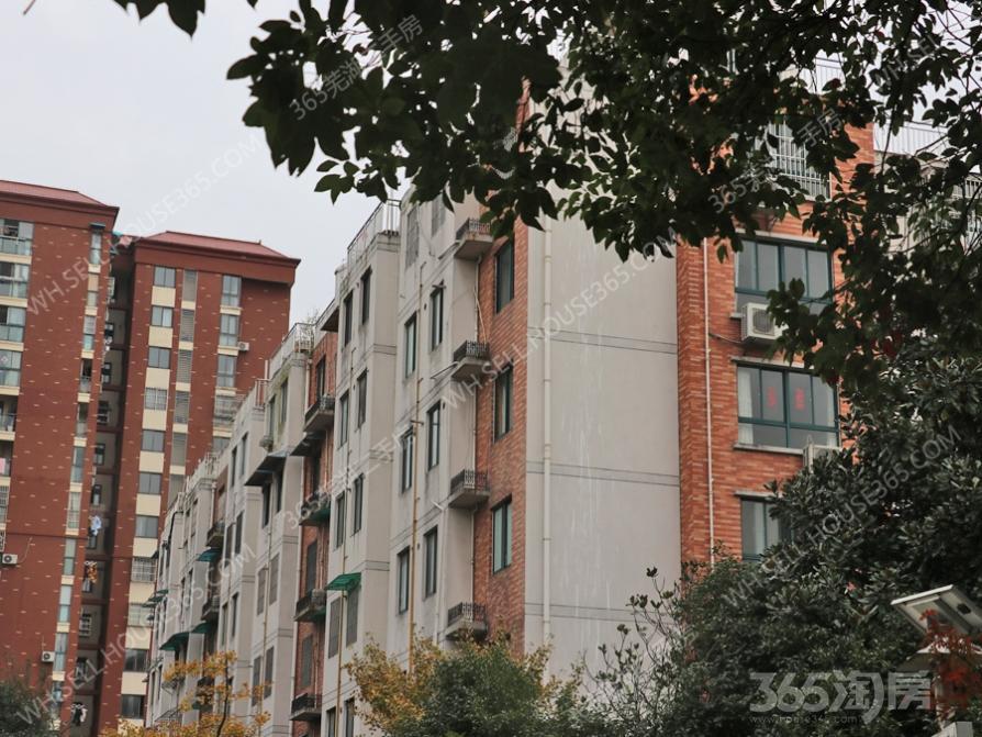 北城水岸三房,白坯,合适二孩或改善型需求,目前本市价格洼地