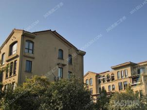 伟星圣地雅歌+全新毛坯+27中学总部+刚需小三房+南北通透好户型