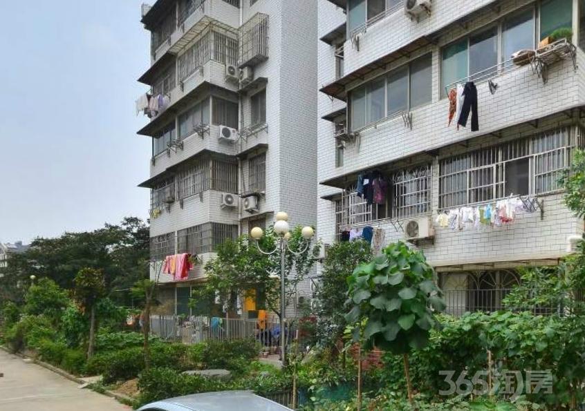 公安新村3室2厅1卫108平方产权房精装