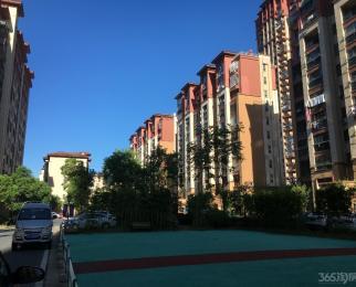 宛陵湖东湖景观房 全明户型 随时看房急售