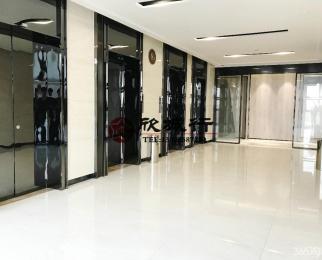 雨花客厅旁 软件大道地铁口 高格调商务中心