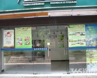 红山动物园东门口精装正规稀缺一楼迎街商铺整租
