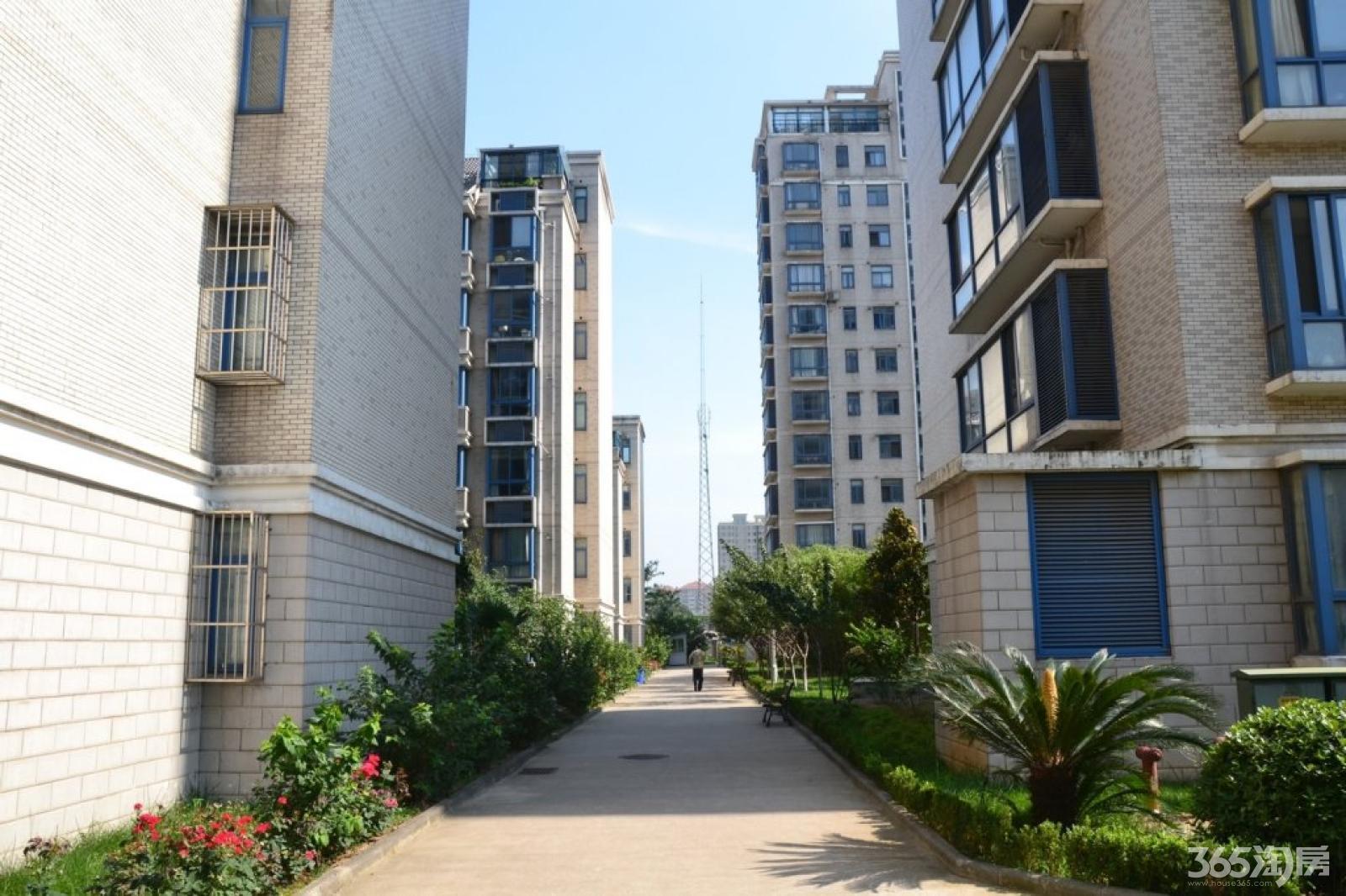 龙江 苏宁雅瑰园 精装电梯三房 家具齐全 配套成熟 交通便利