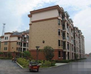 繁华大道西,不限购,花园洋房,户型方正,高端住宅小区