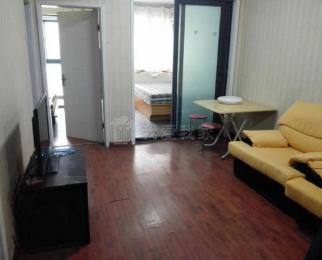 仙林大学城 康桥圣菲 新出精装两房 拎包入住 诚意出租