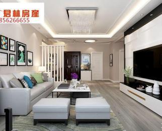 新城科技园旁 仁恒G53 豪装两房 保养如新 拎包入住