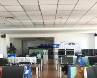 新城科技园 康缘智汇港 实地拍摄 精装428平方 现房