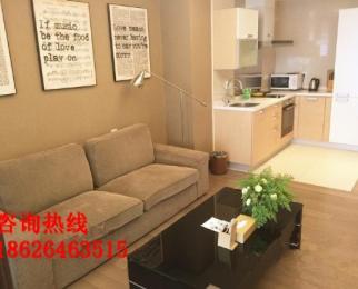 怡景公寓 南京国际 精致装修 湖景房看房方便 诚租