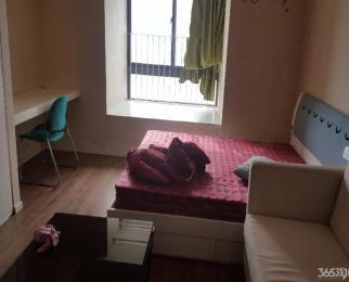 木马公寓 君临国际 凯润金城 精装公寓 单室套 拎包入住