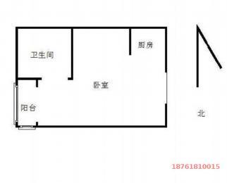 月付好房 将军大道托乐嘉贵邻居 精装单身公寓 电梯房 看房随时