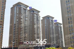 城建琥珀五环城3室2厅1卫97.00平方产权房精装