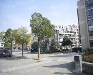 新站区中兴西湖花园 100万80平 精装婚房 随时看房