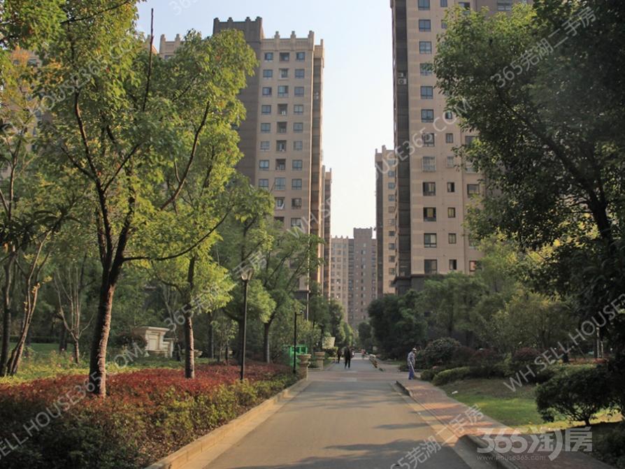 城市之光四街区4室2厅3卫178.83平米无税