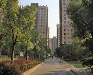 苏宁环球城市之光3室2厅2卫133平米整租毛坯