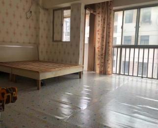 S1佛城西路站 精装一居室 设施齐全 拎包住 看房方便 性价