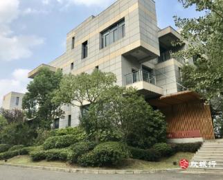 景枫智慧产业园 独栋 私家花园 停车免费 送地库
