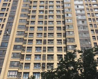 三号线 九龙湖站 万科翡翠公园 企业总部园 九龙湖旁 风景美丽