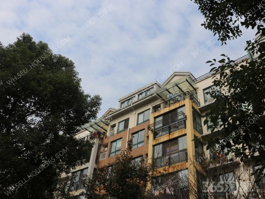 凤凰城北岛+精装整租+两室一厅带阳台