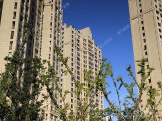 新出朝南 白金湾单身公寓 可挂学区 纯住宅公寓