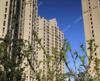 业主置换急售+白金湾朝南带阳台公寓+铂金楼层高\档小区