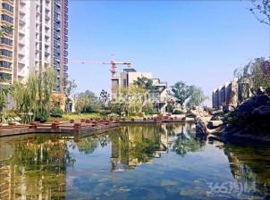 雅居乐林语城,南京雅居乐林语城二手房租房